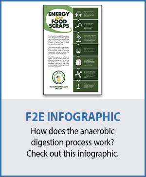 Food 2 Energy Infographic