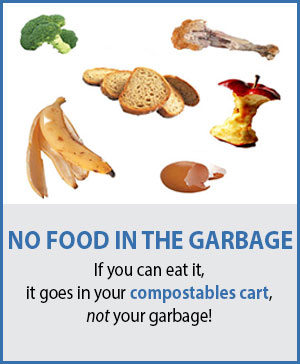 No Food in the Garbage