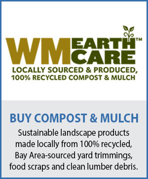 Buy sustainable compost