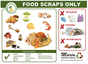 Marin Sanitary Food 2 Energy 5x7 Poster Thumbnail