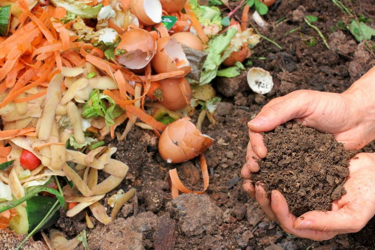Composting in Marin